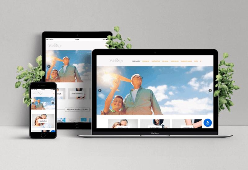 Corporate Website For WellNor